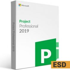 Microsoft Project Professional 2019 (ESD License)